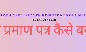 जन्म प्रमाण पत्र कैसे बनायें | birth certificate registration online