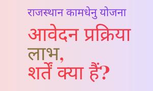 कामधेनु डेयरी योजना राजस्थान
